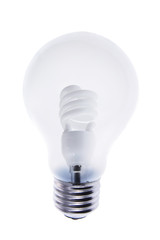 Light Bulbs on Isolated White Background