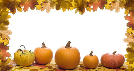Fall leaves with halloween pumpkins on white background