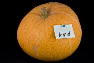 pumpkin with sticker
