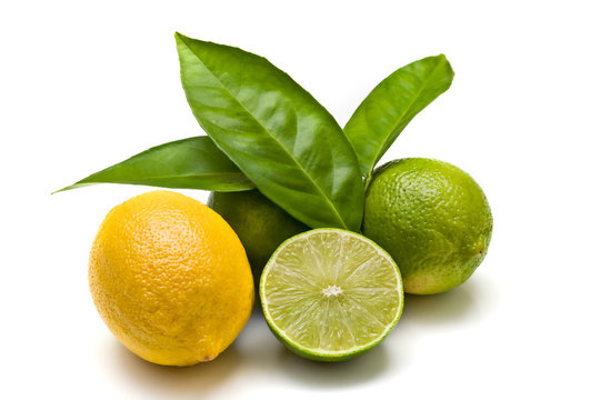 Green limes and lemon isolated on white