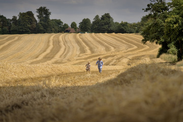 Fototapeta two boys playing in a summer field during harvesting obraz