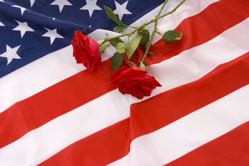 Two crossed red roses in the flag of United States.