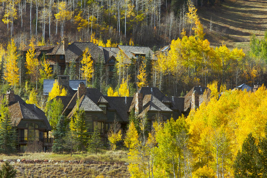 Aspen Condos Amidst the Changing Aspen Pines