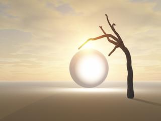 Glowing Globe Under Desert Tree
