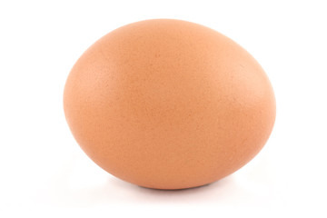 egg isolated