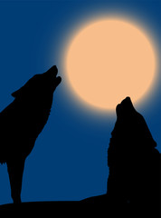 Howling pair of wolves over night sky