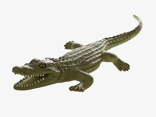 Wall Murals Crocodile Krokodil