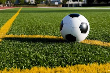 A soccer ball or football on a soccer field