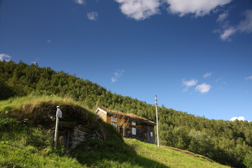 Norwegian museum with grass roof houses