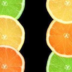 Lemon, Lime and Orange Slices