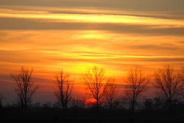 Panonia Sunset