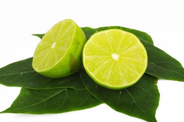 Lime 20