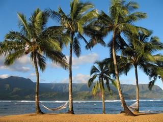 Hawaiian Hammocks