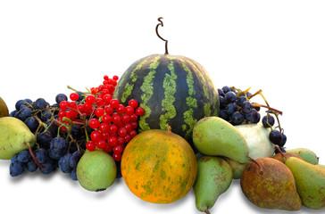 Autumnal fruits: watermelon, melon, grapes, pear, ashberry
