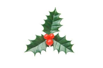 The holly typical ornament of christmas isolated