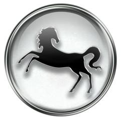 Horse Zodiac icon grey, isolated on white background.