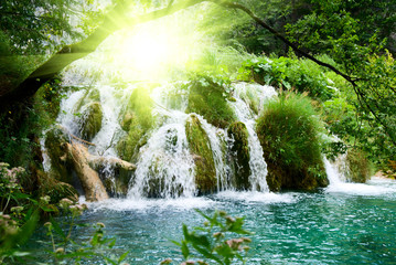 waterfall in deep forest Wall mural