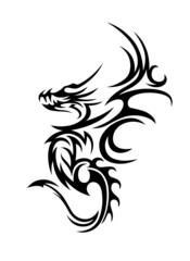 Drache Drachen Dragon Dragons