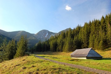 Fototapete - Path in polish Tatra mountains with small shelter