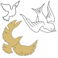 dove illustration