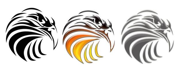eagle bird illustration