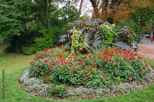 Massif de fleurs rouges et pelouse verte photo libre de droits sur la banque d 39 images fotolia - Massif de fleurs photos ...