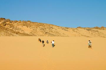groupes d'induividus escaladant la dune