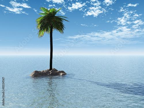 insel mit palme stockfotos und lizenzfreie bilder auf bild 10334567. Black Bedroom Furniture Sets. Home Design Ideas
