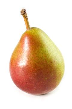 A sweet bite size fresh Seckel Pear