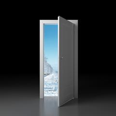Door in winter