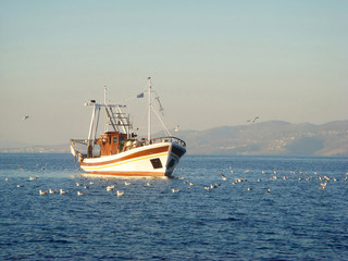 fisher's boat  on the sea among gulls