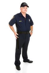 Police Officer full body