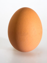 Brown egg isolated on white background
