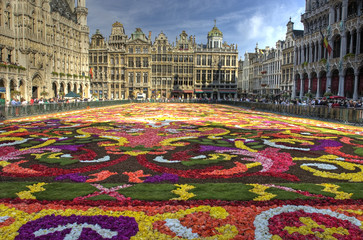 Ingelijste posters Brussel brussels carpet