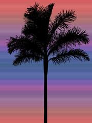palmier noir sur fond de coucher de soleil