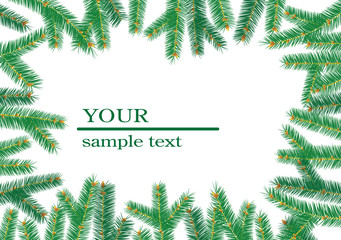 Christmas tree branchs frame. Greeting card.