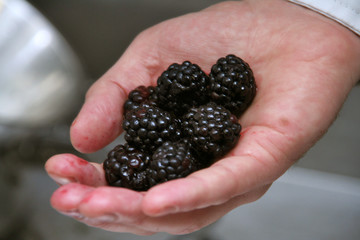 blackberry in a man's hand