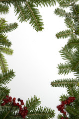Spruce frame with white background