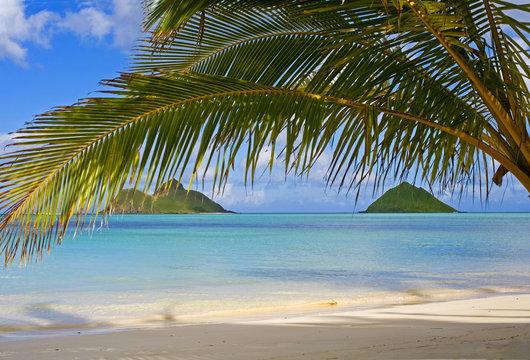 the mokulua islands off lanikai beach, oahu, hawaii