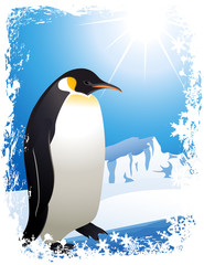 Penguin in the Arctic, vector illustration