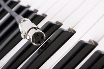 close up of female XLR (microphone) connector on piano