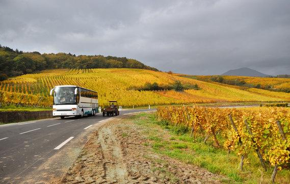 Vine Route Motorway