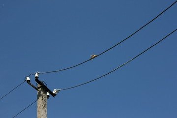Old electricity line