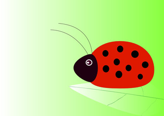 Ladybird on a leaflet on a light green background