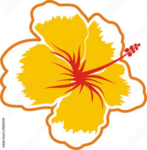 Flor Tropical Imagenes De Archivo Y Vectores Libres De Derechos En