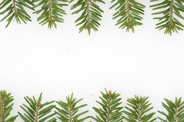 Fir frame on  white background