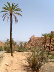 Tafraoute au Maroc