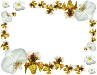 bordure fleurie