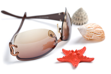sunglasses and sea shells isolated. holiday concept