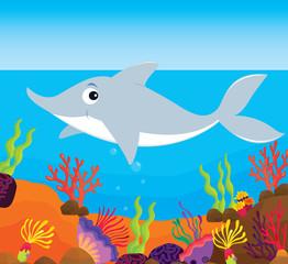 Poster Submarine tropical fish